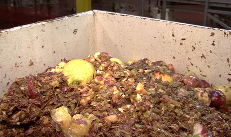 odor control garbage dump