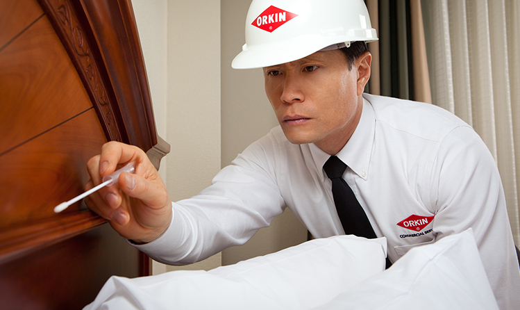 hospitality hotel pest control inspection