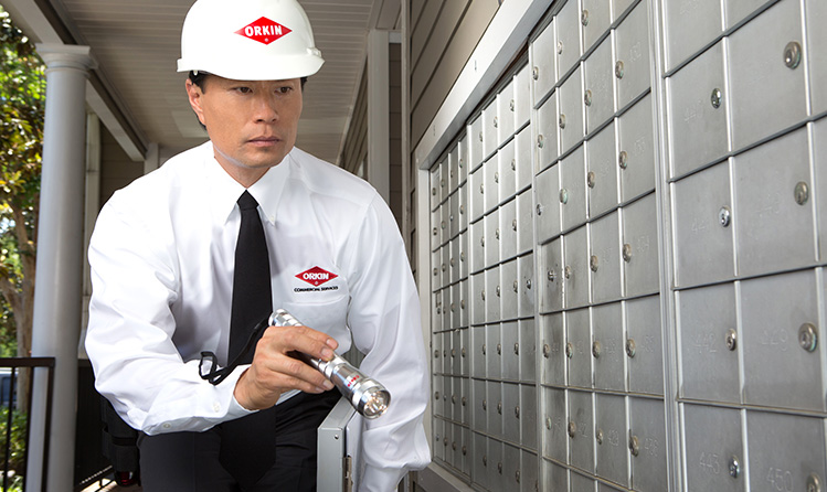 multifamily apartments pest control mailbox inspection