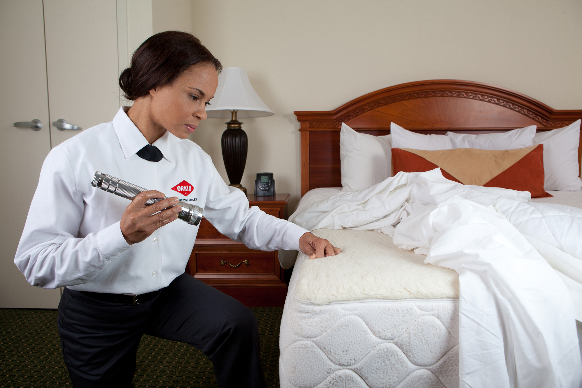 Hospitality Pest Control - Commercial Services for Hotels