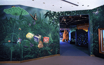 Orkin's Insect Zoo at the Smithsonian
