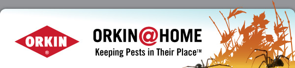 Orkin@Home: Keeping Pests in Their Place