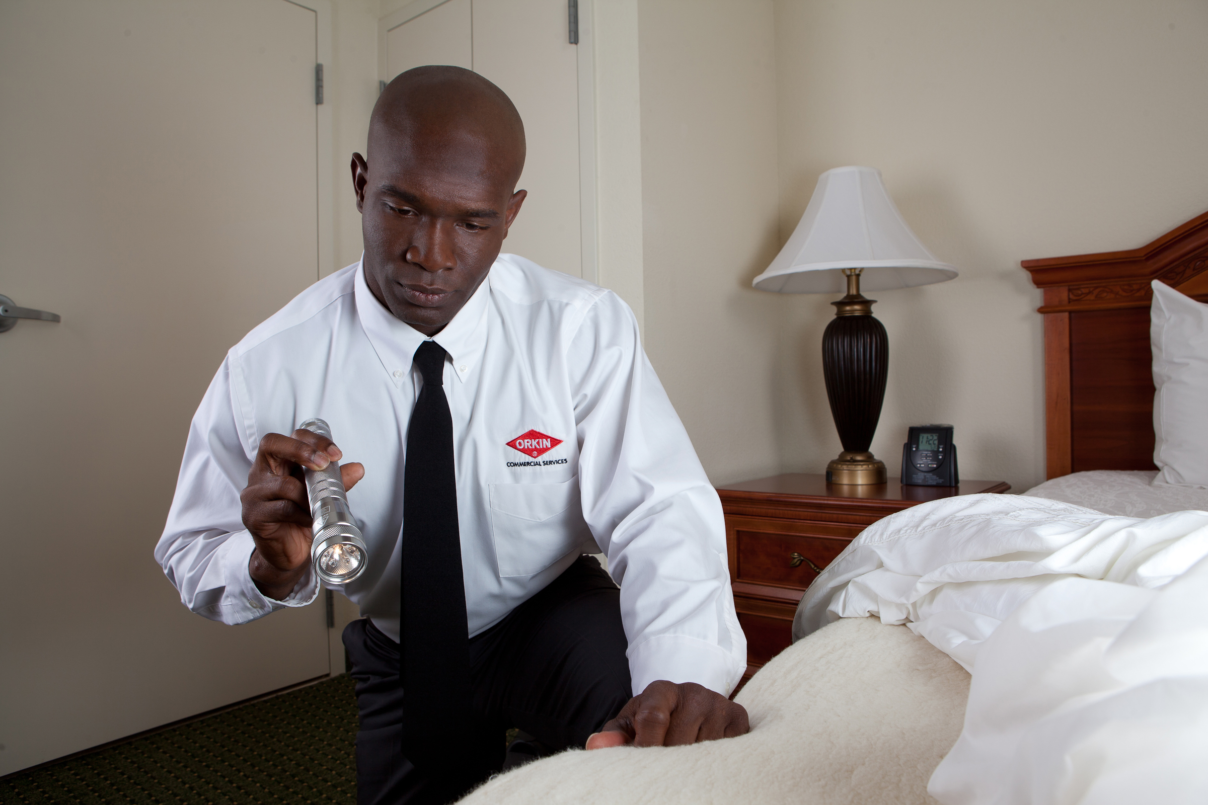 Proactive Bed Bug Service For Hotels