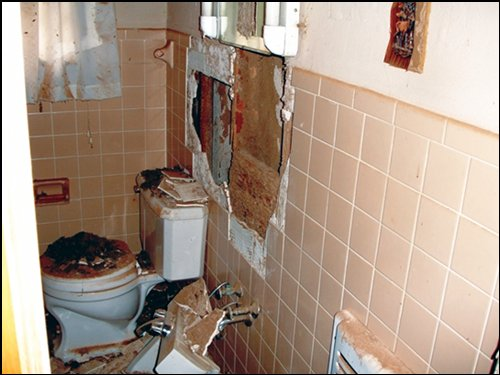 picture of termite bathroom damage