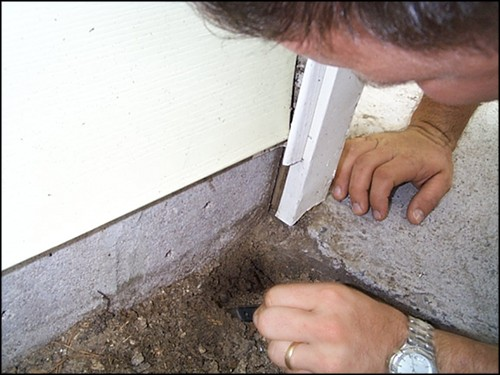 termite inspector looking for termites in soil next to home