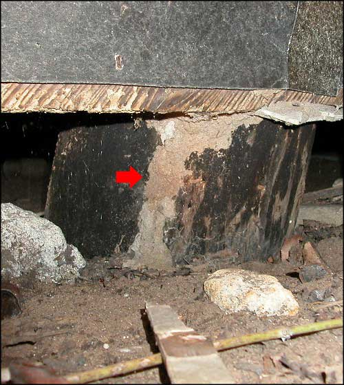 termite tunnel in a subfloor